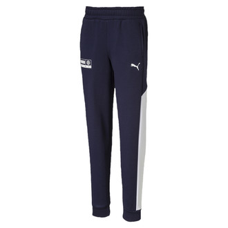 Dečija trenerka Puma Alpha Sweat Pants FL B
